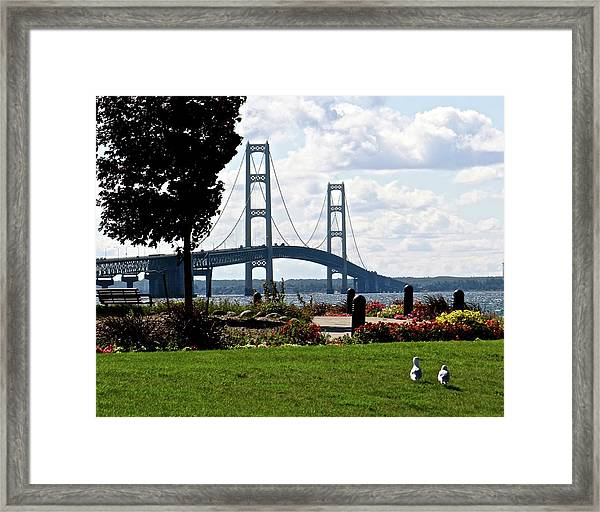 Walking To The Bridge Framed Print