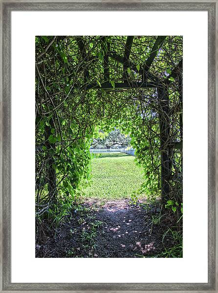 Walkway From Greenhouse Framed Print
