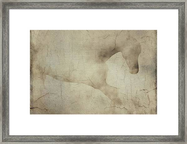 Framed Print featuring the painting Wall With Picture Of A White Horse by Jan Keteleer