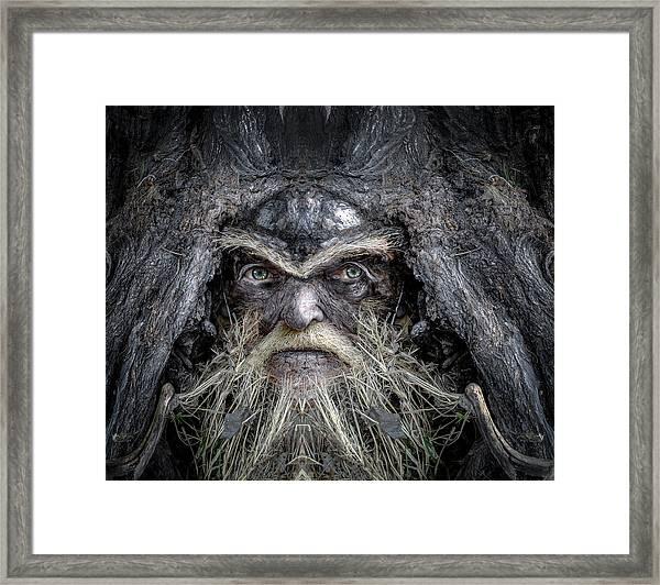 Wally Woodfury Framed Print