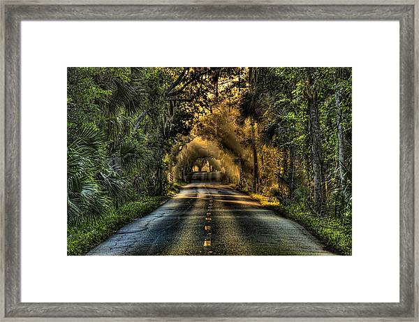 Walter Boardman Lane Framed Print