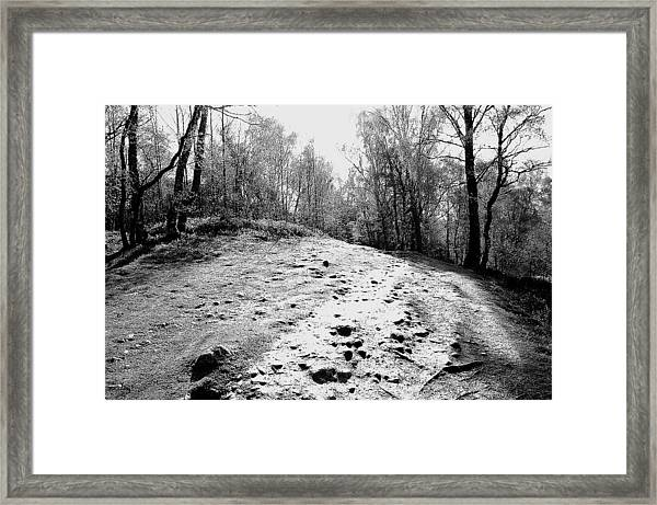 Framed Print featuring the photograph Wanderlust by HweeYen Ong