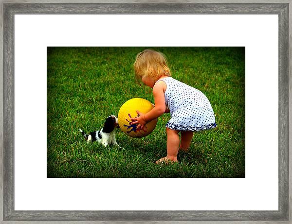 Wanna Play Ball Framed Print