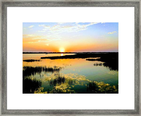 Warm Wet Wild Framed Print