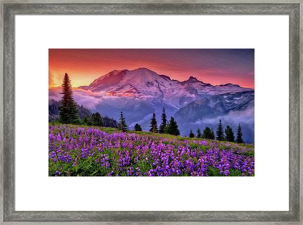 Washington, Mt Rainier National Park - 05 Framed Print