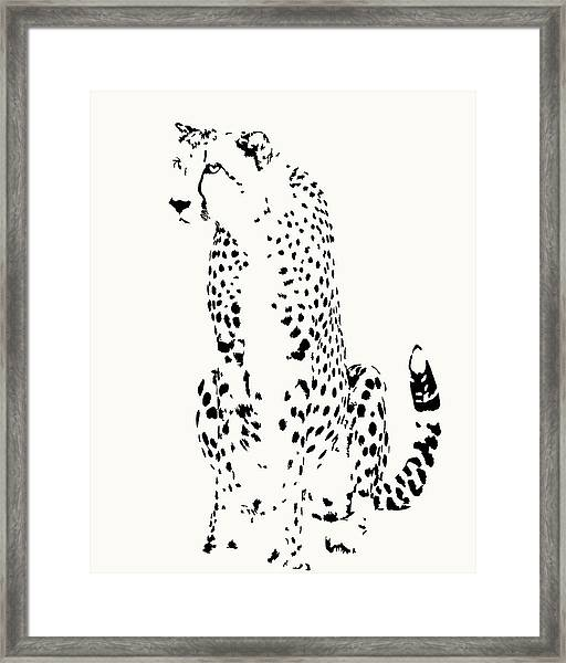 Watchful Cheetah On Its Haunches Framed Print