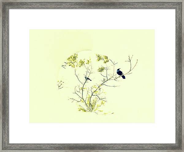 Watching For Winter Framed Print