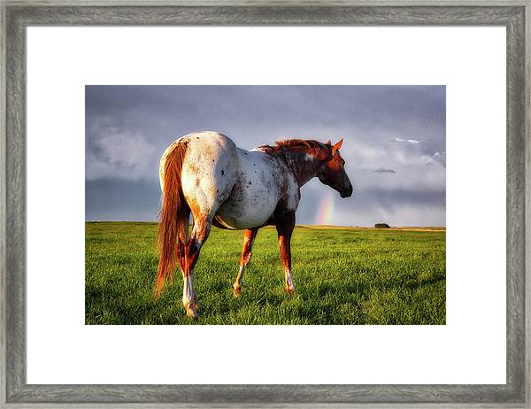 Watching The Rainbow Framed Print