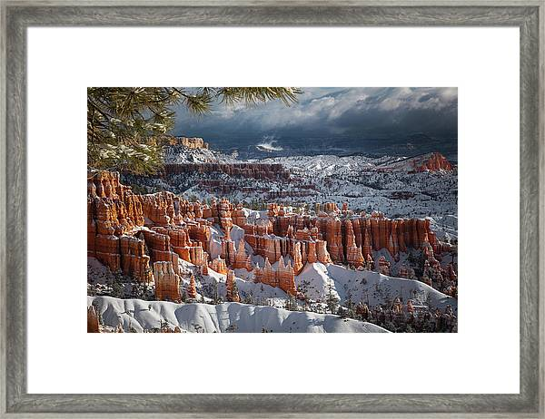 Winter Breeze Framed Print