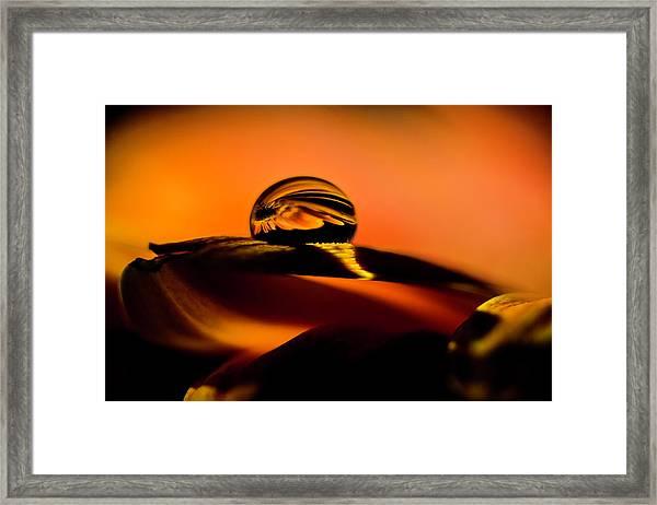 Water Drop On Orange Framed Print