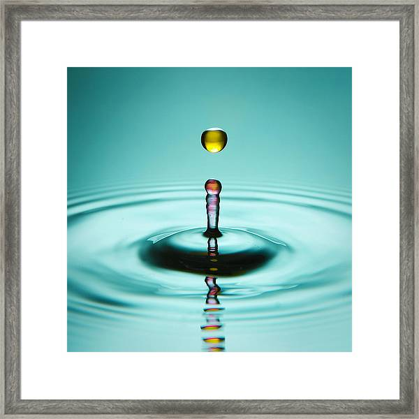 Water Landing Framed Print
