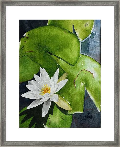 Framed Print featuring the painting Water Lilly by Gigi Dequanne