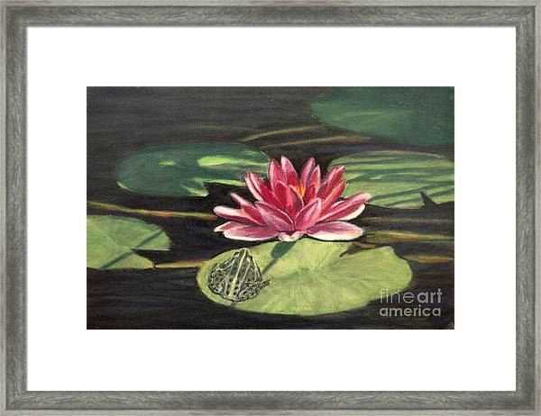 Water Lily Patio Framed Print