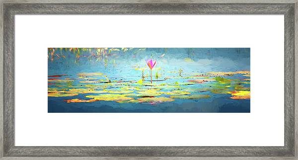 Water Lily - Tribute To Monet Framed Print