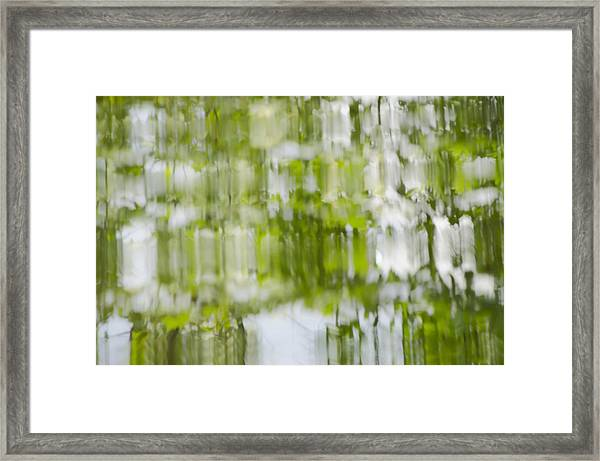 Water Reflections Framed Print