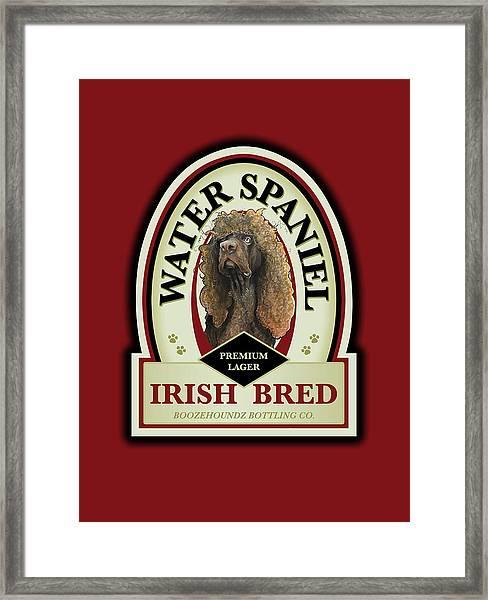 Water Spaniel Irish Bred Premium Lager Framed Print