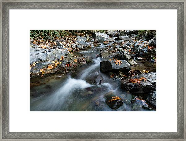Water Stream Flowing In The River In Autumn Framed Print