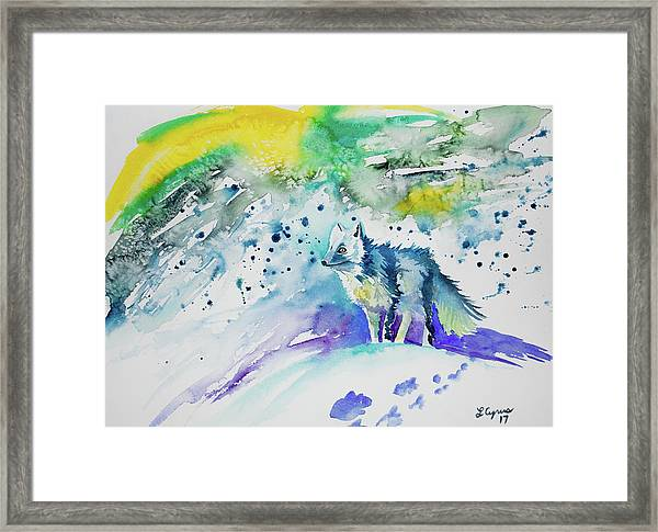 Watercolor - Arctic Fox Framed Print