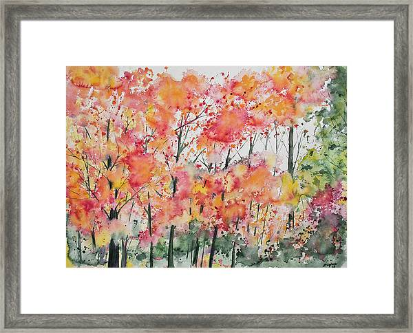 Watercolor - Autumn Forest Framed Print
