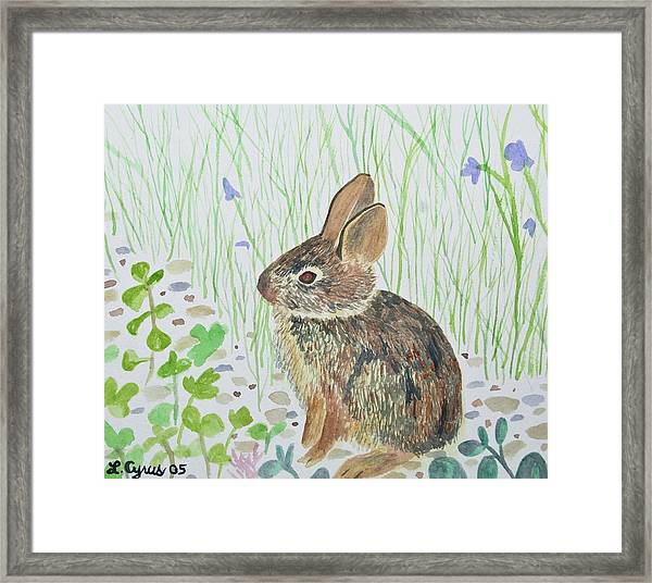 Watercolor - Baby Bunny Framed Print