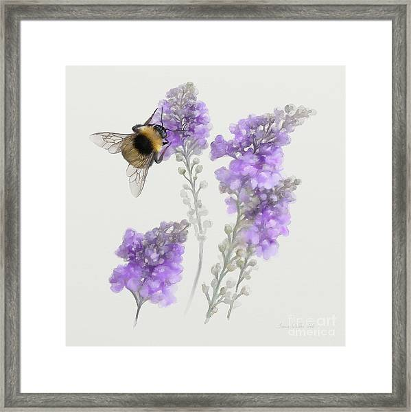 Watercolor Bumble Bee Framed Print
