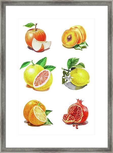 Watercolor Food Illustration Fruits Framed Print