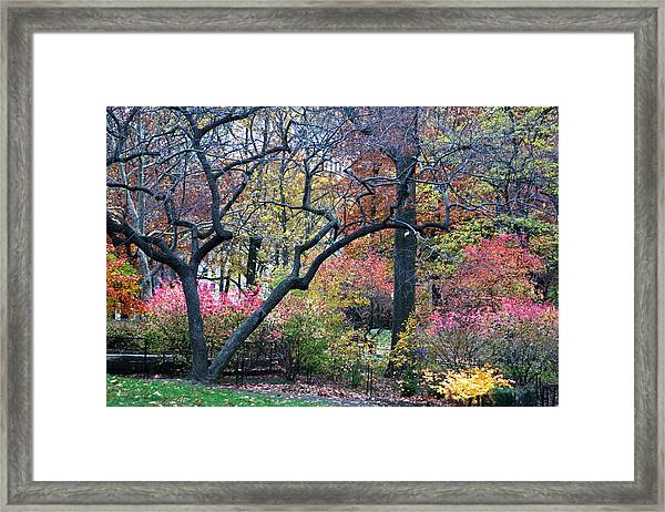 Framed Print featuring the photograph Watercolor Forest by Lorraine Devon Wilke