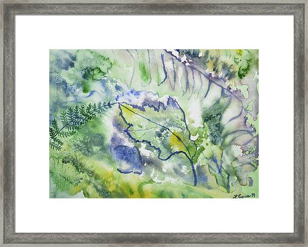 Watercolor - Leaves And Textures Of Nature Framed Print