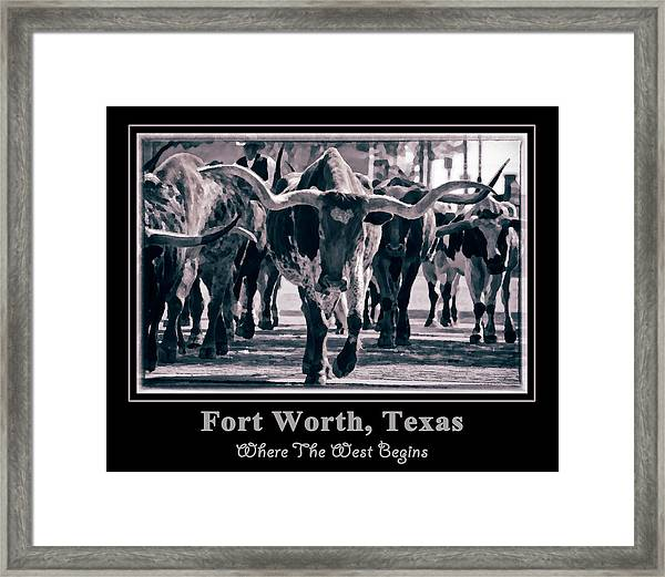 Watercolor Longhorns 2015 Framed Print