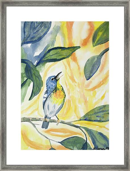 Watercolor - Northern Parula In Song Framed Print