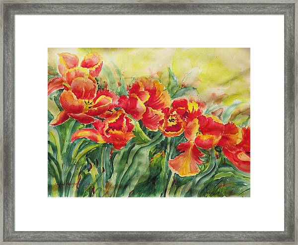 Watercolor Series No. 241 Framed Print