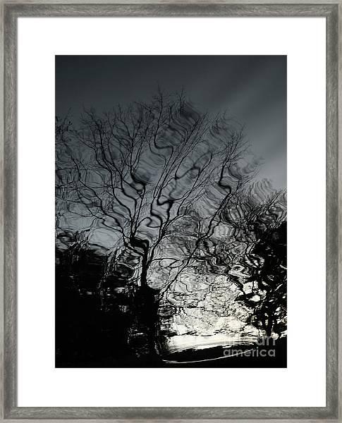 Watereflct4 Framed Print