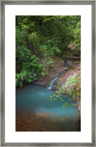 Waterfall Great Barrier Island New Zealand Framed Print