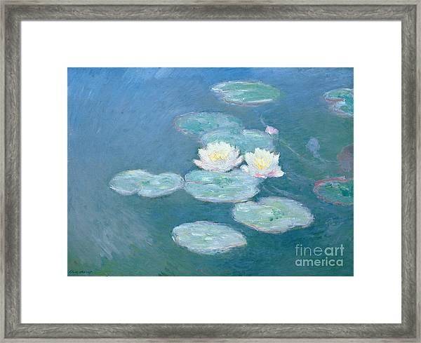 Waterlilies Evening Framed Print