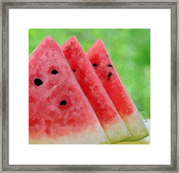 Watermelon Slices Framed Print