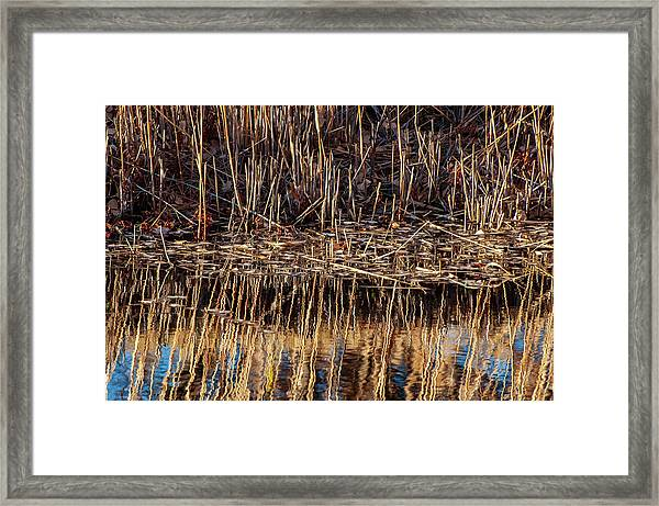 Framed Print featuring the photograph Water's Edge Reflection by Britt Runyon