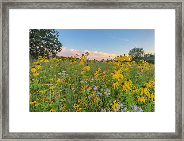 Prairie 1 Framed Print