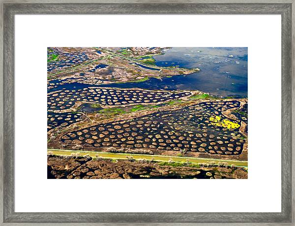 Waterways 4 Framed Print by Sylvan Adams
