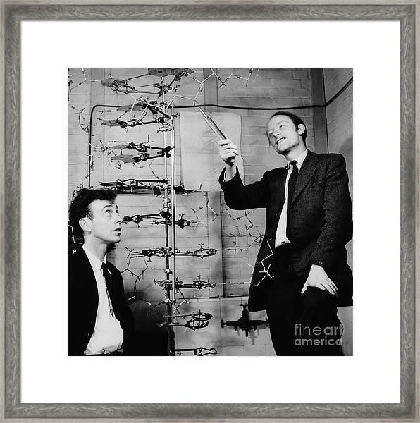 Watson And Crick Framed Print
