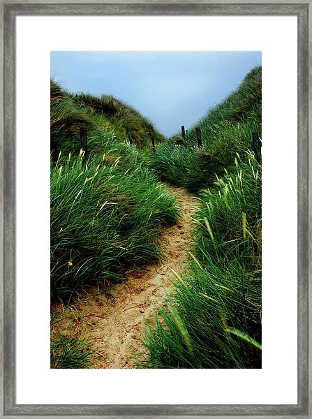 Way Through The Dunes Framed Print