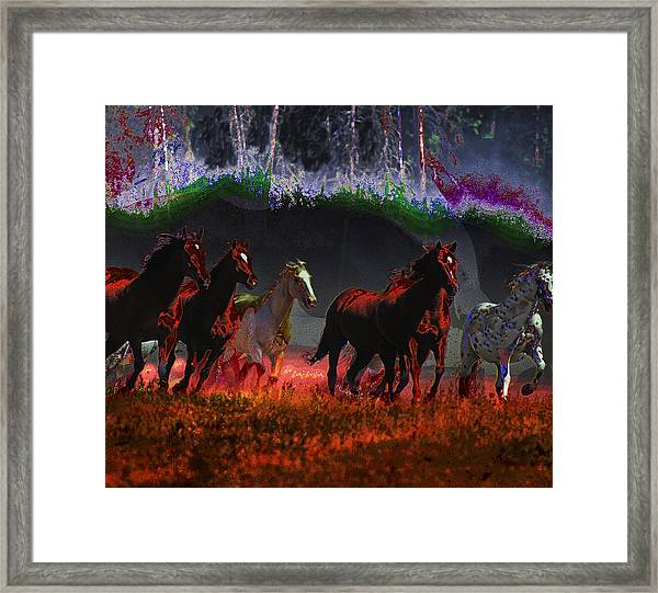 We Are Free  Framed Print