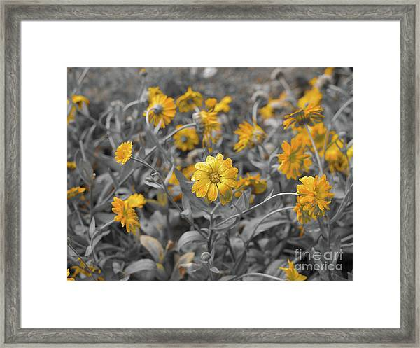 We Fade To Grey Framed Print