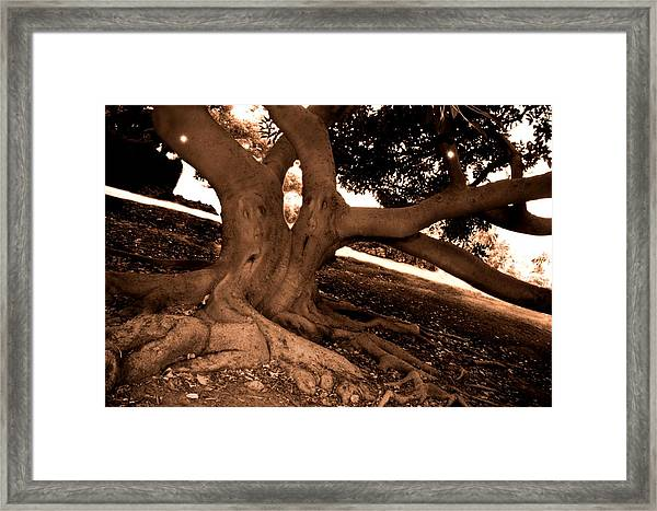 We Would -- Screaming Trees Framed Print