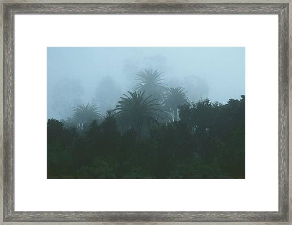 Weatherspeak Framed Print