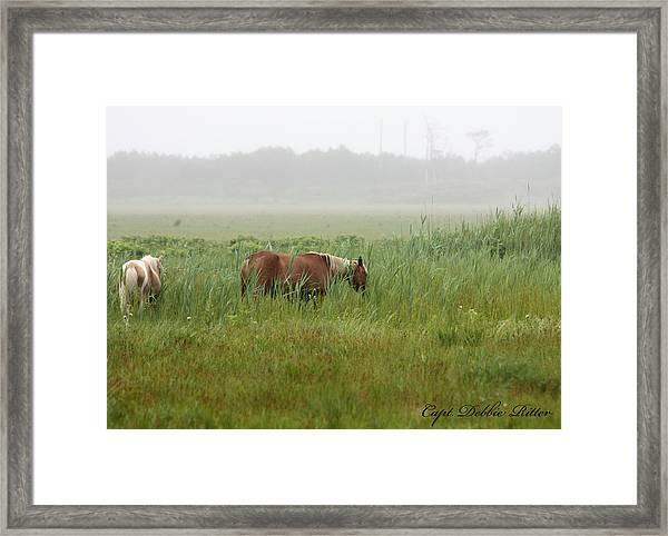 Weed Framed Print