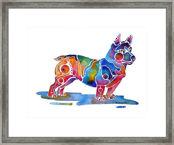 Welsh Corgi  Framed Print