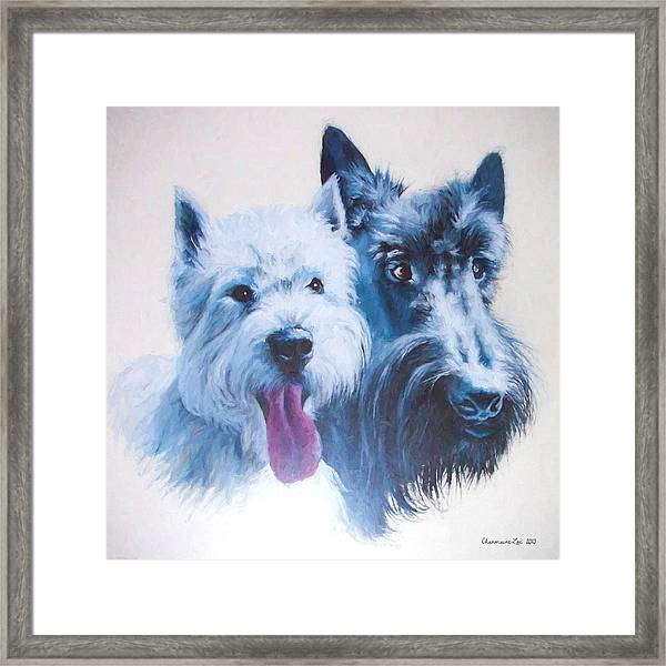 Westie And Scotty Dogs Framed Print