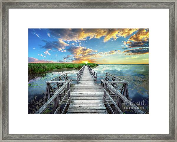 Wetland Marsh Sunrise Treasure Coast Florida Boardwalk A1 Framed Print