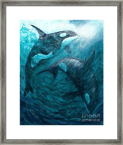 Whales  Ascending  Descending Framed Print