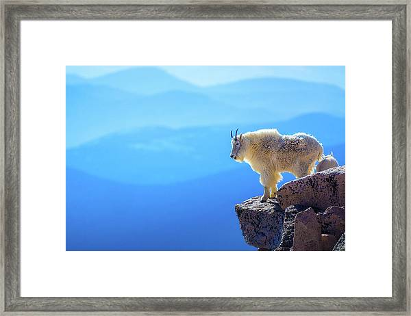 What A View Framed Print